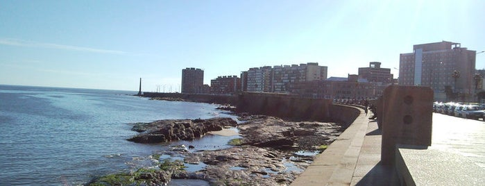 Rambla Gran Bretaña is one of Coolplaces Montevideo.