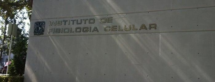 Instituto De Fisiologia Celular UNAM is one of Lieux qui ont plu à Elias.