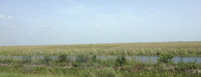 Alligator Alley is one of Where I have been.