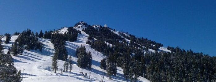 Mt Ashland Ski Resort is one of Ashland!.