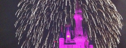 Wishes Nighttime Spectacular is one of My vacation @Orlando.
