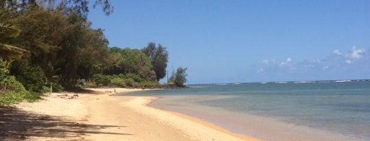 Anini Beach is one of kauai.