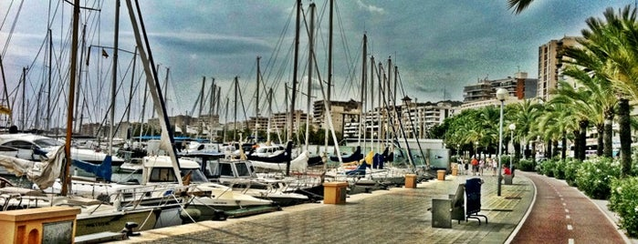 Paseo Marítimo is one of All-time favorites in Spain.