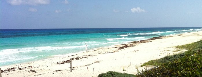Cozumel is one of Cancun.