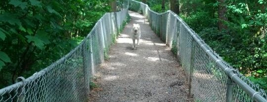 Northacres Off-Leash Dog Park is one of Dog Parks.