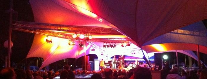 Jazz in 't Park is one of Lieux qui ont plu à Vincent.