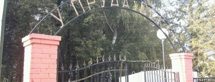 Пруд Бекет is one of Orte, die Nikita gefallen.
