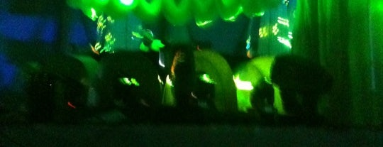 #Sensationcl - Wicked Wonderland is one of Lugares Nocturnos, Pubs.