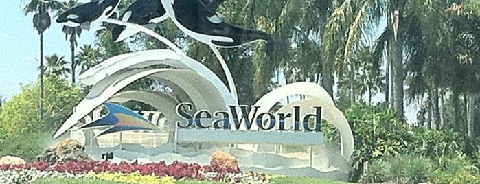 SeaWorld Orlando is one of Theme Parks I've Visited.