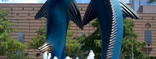 Downtown Aquarium is one of Zoos of Texas.