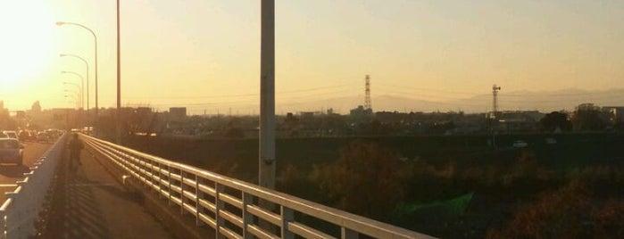 秋ヶ瀬橋 is one of Locais curtidos por Tomato.
