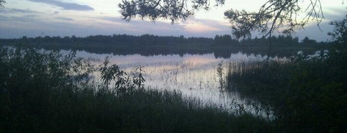 Мещёрский национальный парк is one of Russia10.