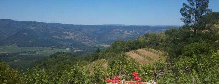 Barnett Vineyards is one of Napa Valley.
