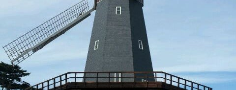 Murphy Windmill is one of Golden Gate Park: West End.
