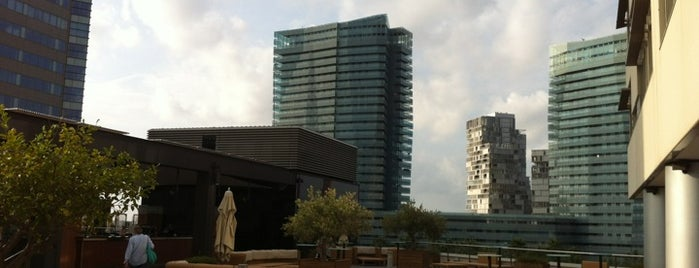 Brisa Pool Bar @ Hilton is one of Mejores Terrazas en Barcelona.