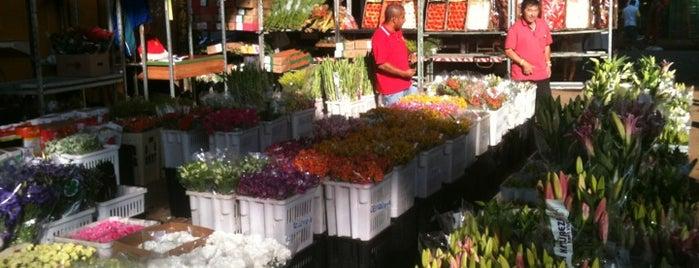 Feira de Flores da CEAGESP is one of Preferidos São Paulo.