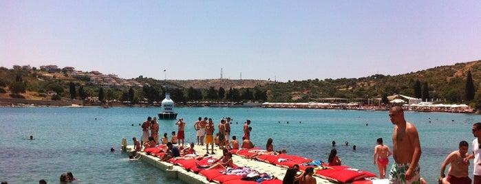 KafePi Beach Club is one of Çeşme ve Deniz.