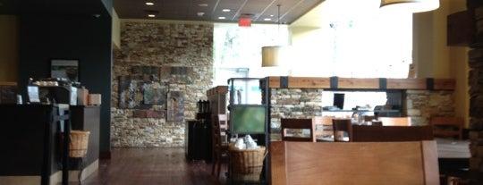 Starbucks is one of Tempat yang Disukai Damian.