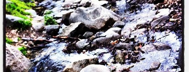 Mt. Wilson Trail is one of Hiking - LA - South Bay - OC - etc..