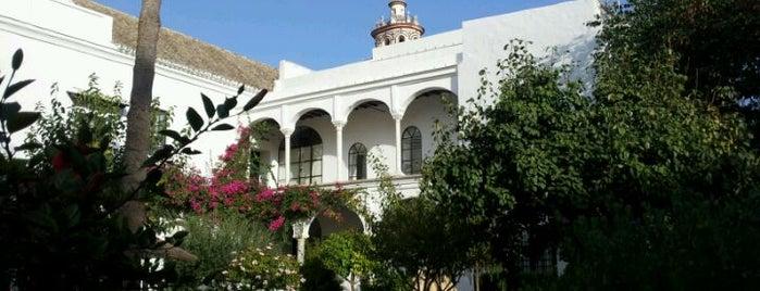 Palacio de Medina Sidonia is one of Costa ballena.