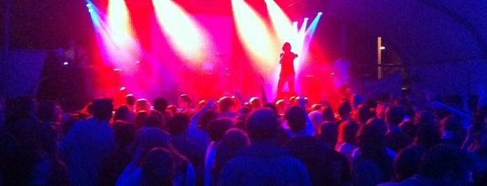 Lotus World Music Festival is one of Lieux sauvegardés par Carly.