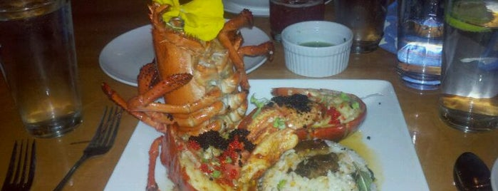 Catch - Modern Seafood Cuisine is one of Where to Eat in Wilmington, NC.