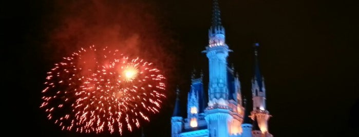 Cinderella Castle is one of Locais curtidos por Shank.