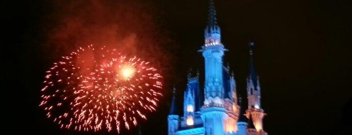 Cinderella Castle is one of Tempat yang Disukai Shank.