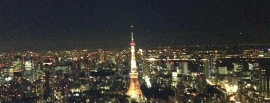 六本木ヒルズ展望台 東京シティビュー is one of 日本夜景遺産.