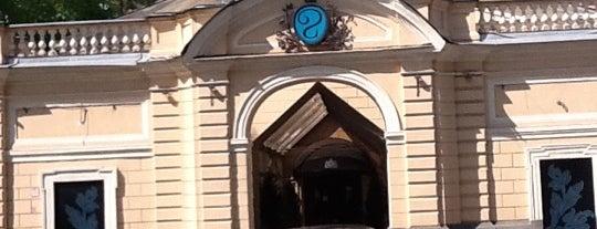 Fitness Palace is one of Locais curtidos por Telman.