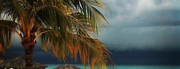 Bucuti Beach is one of Elizabeth'in Beğendiği Mekanlar.
