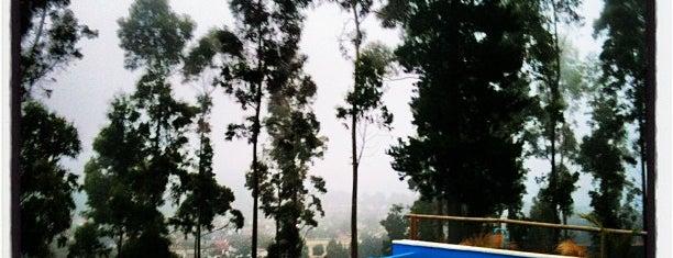 Pingueral is one of สถานที่ที่ Luis ถูกใจ.