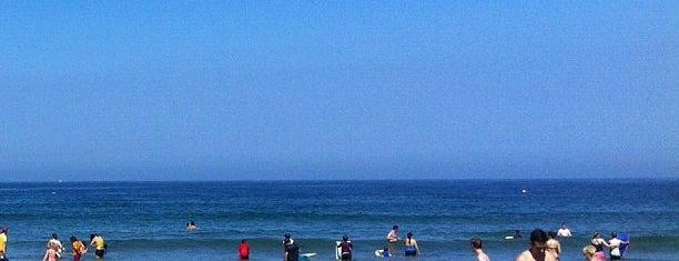 La Jolla Shores Beach is one of San Diego.