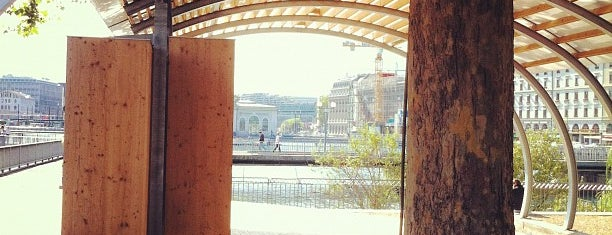 Pont des Bergues is one of Genève 🇨🇭.