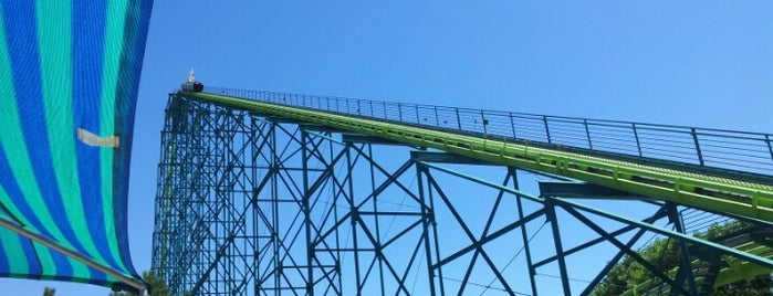 Wild Thing is one of Rollercoasters I've Conquered.