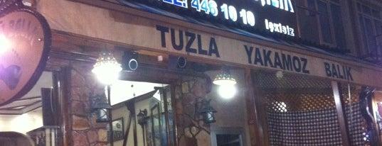 Tuzla Yakamoz Balık is one of Restaurantlar.