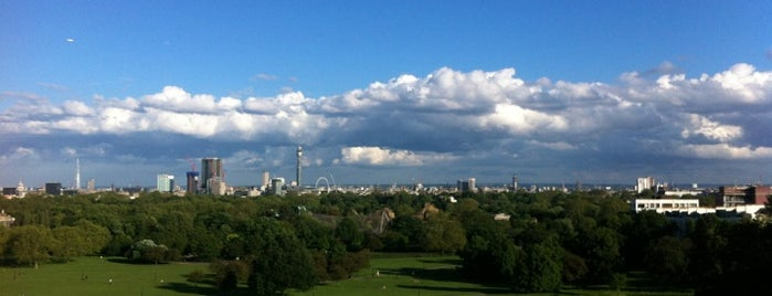 Primrose Hill is one of London Essentials.