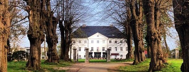 Schlossgut Groß Schwansee is one of Lugares guardados de Matthias.