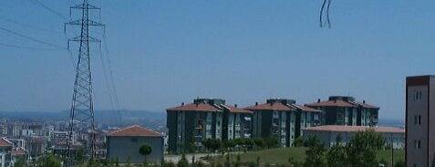 Kurtköy is one of Pendik.
