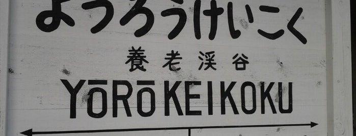 Yoro-Keikoku Station is one of Lugares favoritos de Yutaka.