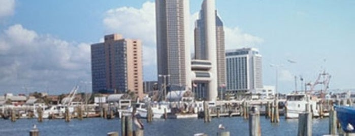 City of Corpus Christi is one of Most Populous Cities in the United States.
