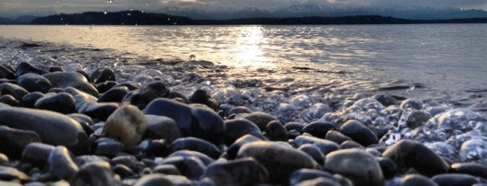 Alki Beach Park is one of Stevenson Favorite US Beaches.