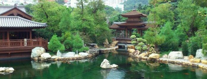 Nan Lian Garden is one of Hong Kong Experience.