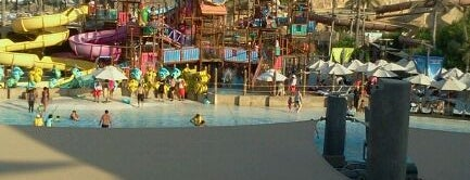 Wild Wadi Water Park is one of Best of World Edition part 1.