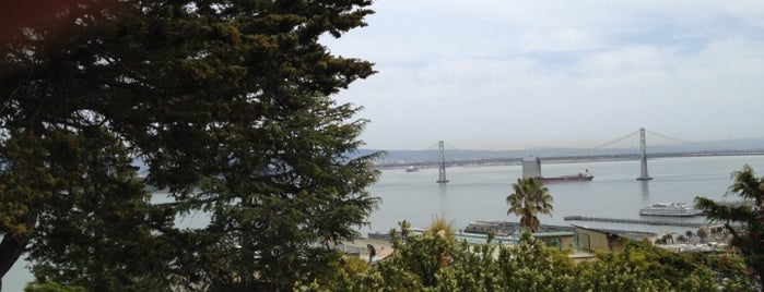 The Parrots of Telegraph Hill is one of Atlas Obscura SF Exploration Spots, OD 2012.
