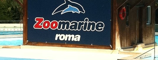 Zoomarine is one of Italy.