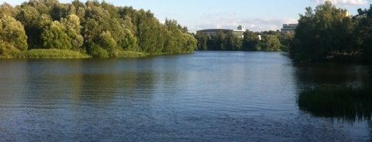 Серебряный бор is one of Сады и парки Москвы.