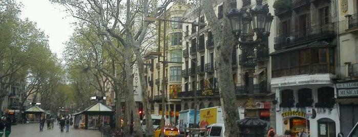 La Rambla is one of 101 llocs a veure a Barcelona abans de morir.