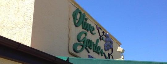 Olive Garden is one of B David : понравившиеся места.