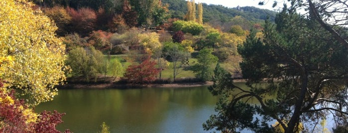 Mount Lofty Botanic Garden is one of Lieux sauvegardés par Ruth.